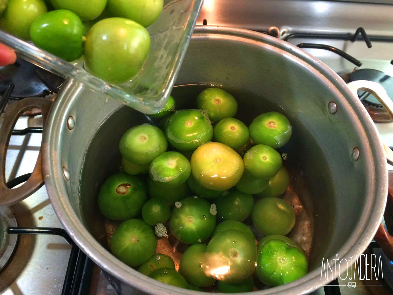 La Antojadera | Enchiladas Verdes